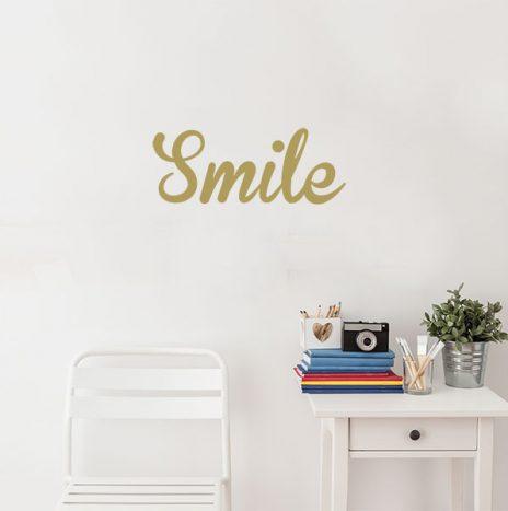 מדבקת קיר Smile